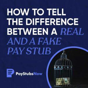 real fake pay stub